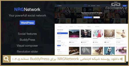 دانلود پوسته شبکه اجتماعی NRGNetwork برای BBPress نسخه 1.4.5